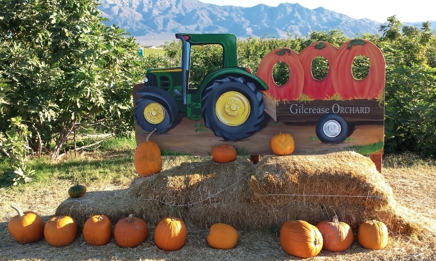 From Gilcrease Orchard, Las Vegas, Nevada